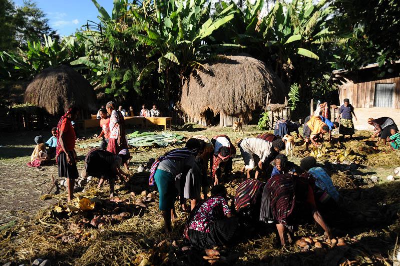 Indonesien, West-Papua, Baliem-Tal, valley, Wamena, Dani, tribe, Stammesdorf, Dorffest, Ostern, earth cooking, Kochen, Erdloch, Erde, Reisebericht, www.wo-der-pfeffer-waechst.de
