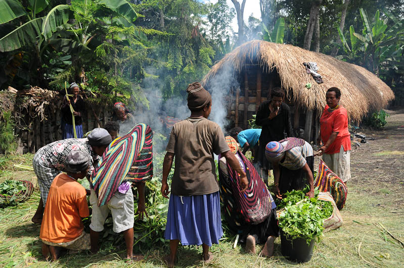 Indonesien, West-Papua, Baliem-Tal, valley, Wamena, Dani, tribe, Stammesdorf, Dorffest, Ostern, Frauen, Kochen, Feuer, earth cooking,, Reisebericht, www.wo-der-pfeffer-waechst.de
