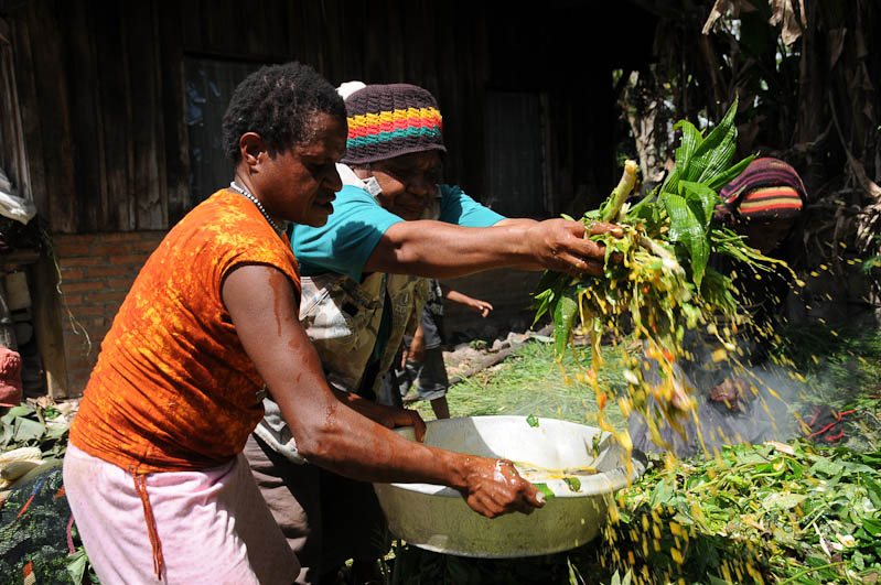 Indonesien, West-Papua, Baliem-Tal, valley, Wamena, Dani, tribe, Stammesdorf, Dorffest, Ostern, Kochen, Feuer, earth cooking, Reisebericht, www.wo-der-pfeffer-waechst.de