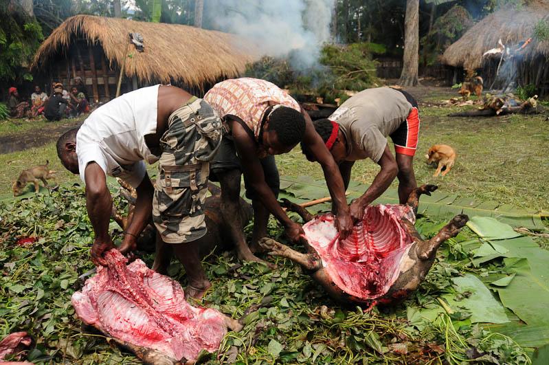 Indonesien, West-Papua, Baliem-Tal, valley, Wamena, Dani, tribe, Stammesdorf, Dorffest, Ostern, Schwein, schlachten, Reisebericht, www.wo-der-pfeffer-waechst.de