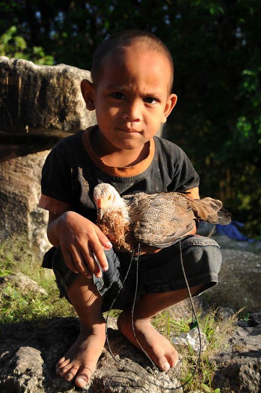 Sumba, Insel, Indonesien, traditionelle Dörfer, Dorf, traditional, village, Junge, Huhn, Marapu, Religion, Reisebericht, www.wo-der-pfeffer-waechst.de