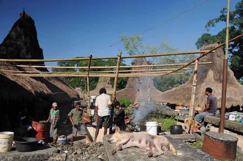 Sumba, Insel, Indonesien, traditionelle Dörfer, Dorf, Häuser, Hausbau, Bambusgerüst, traditional, village, Marapu, Religion, Reisebericht, www.wo-der-pfeffer-waechst.de