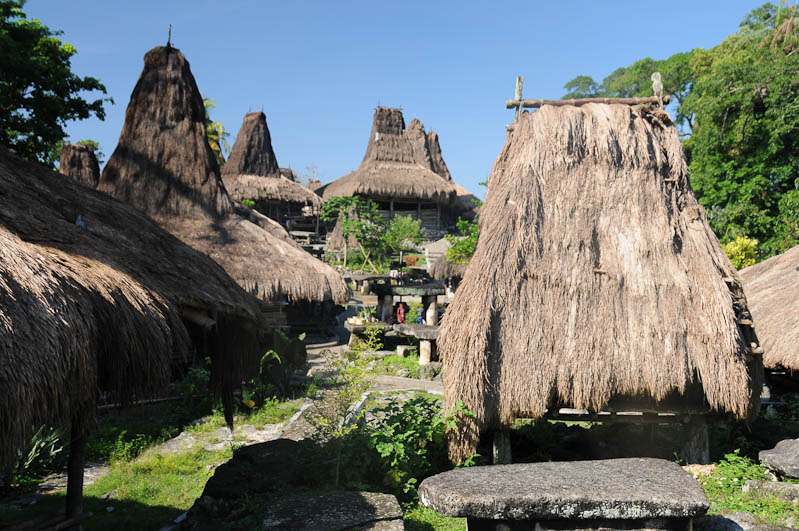 Sumba, Insel, Indonesien, traditionelle Dörfer, Dorf, Häuser, traditional, village, houses, Marapu, Religion, Reisebericht, www.wo-der-pfeffer-waechst.de