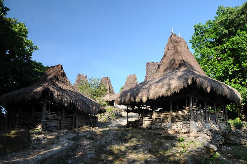 Sumba, Insel, Indonesien, traditionelle Dörfer, Dorf, Häuser, traditional, houses, Marapu, Religion, Reisebericht, www.wo-der-pfeffer-waechst.de