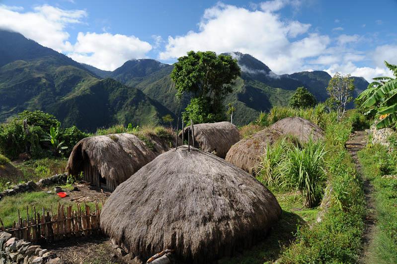 Indonesien, West-Papua, Wamena, Baliem-Tal, valley, Trekking, Stammesdorf, Rundhütten, www.wo-der-pfeffer-waechst.de