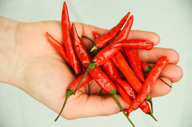 Indonesien, Indonesia, rote Chilischoten, extrem scharfe, vegetarische, vegane, Rezepte, Kochen, Lombok, www.wo-der-pfeffer-waechst.de