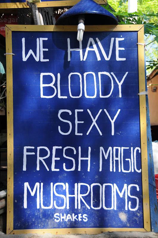 Gili Trawangan, Gili-Inseln, Gilis, Drogen, Alkohol, Magic Mushrooms, Shakes, halluzinogene Pilze, Lombok, Indonesien, Indonesia, Reiseberichte, www.wo-der-pfeffer-waechst.de