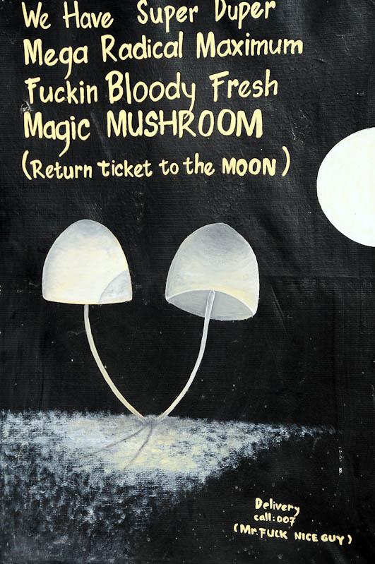 Mister Fuck Nice Guy, Gili Trawangan, Gili-Inseln, Gilis, Drogen, Alkohol, Magic Mushrooms, Shakes, halluzinogene Pilze, Lombok, Indonesien, Indonesia, Reiseberichte, www.wo-der-pfeffer-waechst.de