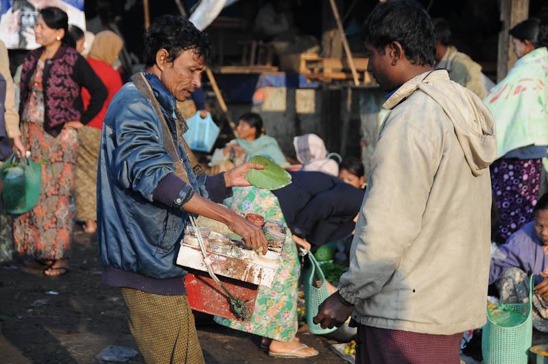 Sittwe, Fischmarkt, Betelnuss, Akyab, Rakhine-Staat, State, Division, Myanmar, Burma, Birma, Reisebericht, www.wo-der-pfeffer-waechst.de