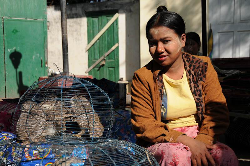Mandalay, gefangene Vögel, Mahamuni-Pagode, Pagoda, Myanmar, Burma, Birma, Reisebericht, www.wo-der-pfeffer-waechst.de