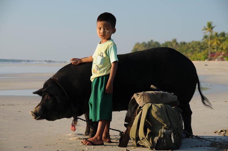 Ngwe Saung Beach, Strand, kleiner Mann mit Schwein, Myanmar, Burma, Birma, Golf von Bengalen, Reisebericht, www.wo-der-pfeffer-waechst.de