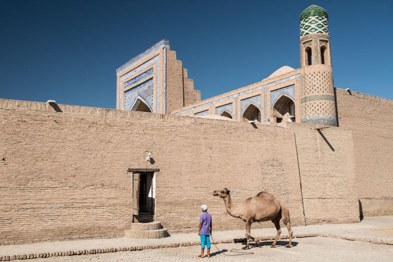 Chiwa, Khiva, Chiva, Xiva, Usbekistan, Uzbekistan, Kamel, Seidenstraße, Reiseberichte, www.wo-der-pfeffer-waechst.de