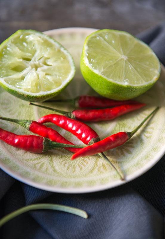 Tom Yam, Suppe, Thailand, Thailändisches, Kochen, Rezepte, Gerichte, Essen, Speisen, Zutaten, vegetarisches, veganes, Limetten, Chili, Reiseblogger, www.wo-der-pfeffer-waechst.de