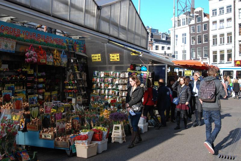 Blumenmarkt, Amsterdam, Zentrum, Städtetrip, Urlaub, Niederlande, Holland, Sehenswürdigkeiten, Reiseberichte, Blog, www.wo-der-pfeffer-waechst.de