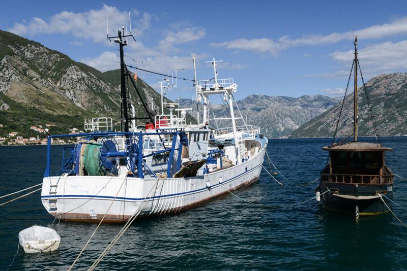 Bucht von Kotor, Montenegro, Boka Bay, Schiffe, Reisetipps, Rundreisen, Europa, Reiseberichte, Reisen mit Kindern, Reiseblogger, www.wo-der-pfeffer-waechst.de