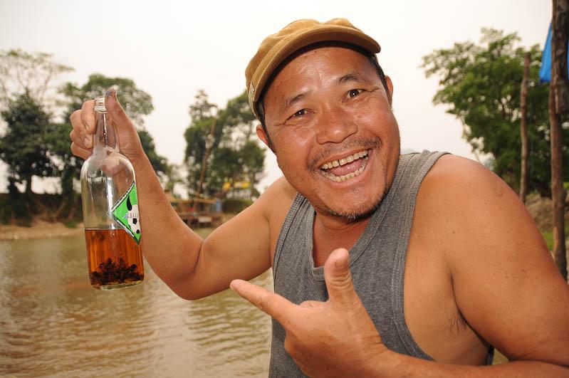 Mister Lao Lao, Bienenschnaps, Bee whisky, Tubing in Vang Vieng, Laos, Nordlaos, Alkohol, Reisetipps, Rundreisen, Asien, Reiseberichte, Reiseblogger, www.wo-der-pfeffer-waechst.de