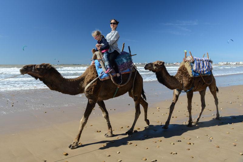 Essaouira, Beach, Strand, Kamelreiten, Marokko, Reisen mit Kindern, Strandurlaub, Bilder, Infos, Reisebericht, Reisetipps, Afrika, Reiseblogger, Strandurlaub, Hotel, baden, www.wo-der-pfeffer-waechst.de