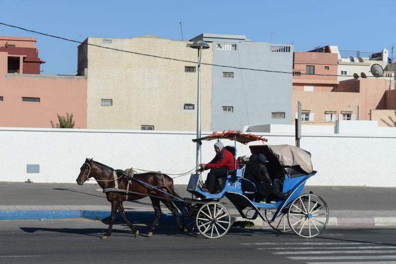 Pferdekutsche, Essaouira, Marokko, Bilder, Infos, Reisebericht, Reisetipps, Afrika, Reiseblogger, baden, www.wo-der-pfeffer-waechst.de