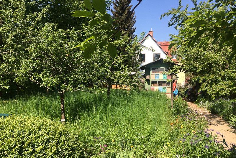 Deutsches Bienenmuseum, Weimar, Öffnungszeiten, Tickets, Sehenswürdigkeiten, Städtetrip, Reisebericht, Deutschland, Thüringen, www.wo-der-pfeffer-waechst.de
