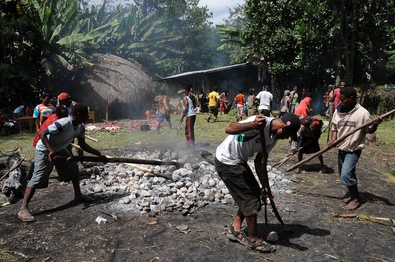 Indonesien, West-Papua, Baliem-Tal, valley, Wamena, Dani, tribe, Stammesdorf, Dorffest, Ostern, Feuer, Erde, Kochen, earth cooking,, Reisebericht, www.wo-der-pfeffer-waechst.de