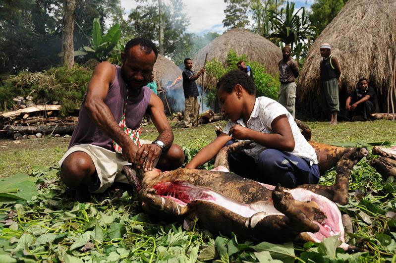 Indonesien, West-Papua, Baliem-Tal, valley, Wamena, Dani, tribe, Stammesdorf, Dorffest, Ostern, Familie, Vater, Sohn, Schwein, Kochen, earth cooking, Reisebericht, www.wo-der-pfeffer-waechst.de