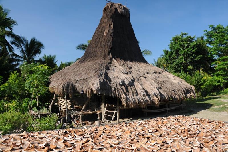 Sumba, Insel, Indonesien, traditionelle Dörfer, Dorf, traditional, village, Haus, Kokosnuss, trocknen, Marapu, Religion, Reisebericht, www.wo-der-pfeffer-waechst.de