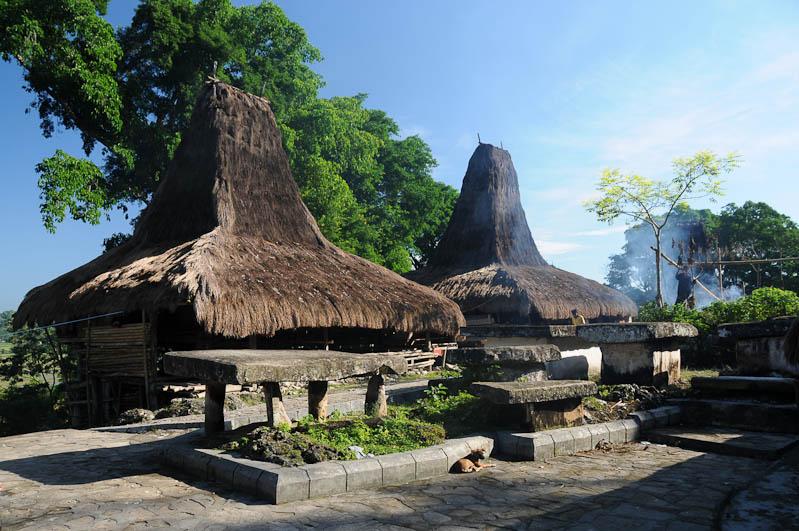 Sumba, Insel, Indonesien, traditionelle Dörfer, Häuser, Steinaltar, Marapu, Religion, Reisebericht, www.wo-der-pfeffer-waechst.de