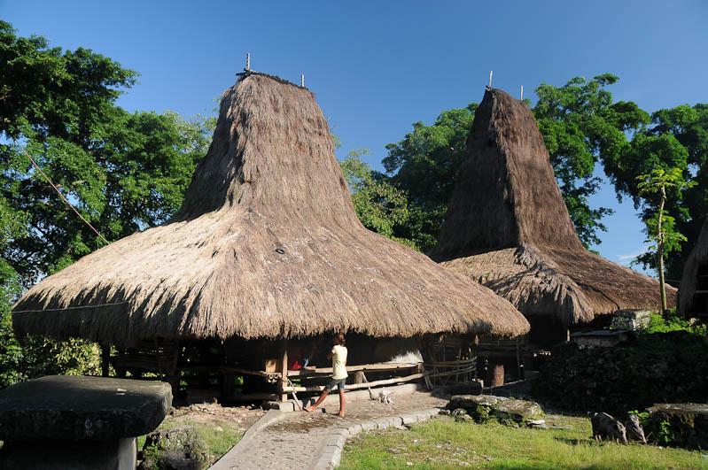 Sumba, Insel, Indonesien, traditionelle Dörfer, Dorf, Häuser, traditional, village, Marapu, Religion, Reisebericht, www.wo-der-pfeffer-waechst.de