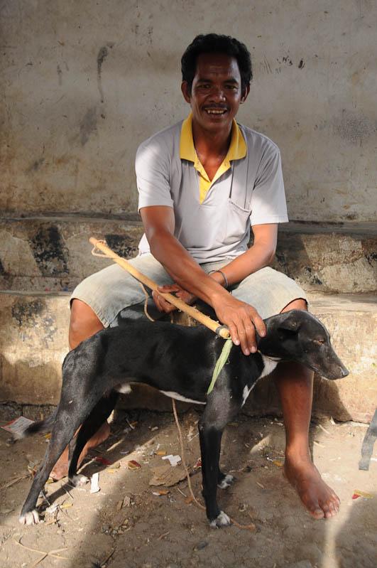 Indonesien, Sumba, Insel, Waikabubak, Markt, Hunde, Reisebericht, www.wo-der-pfeffer-waechst.de
