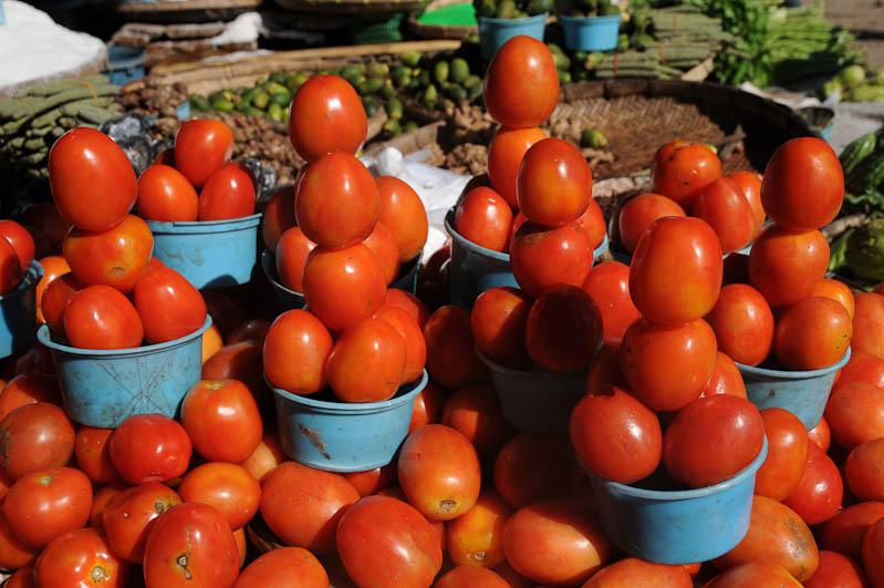 Indonesien, Sumba, Insel, Waikabubak, Markt, Tomaten, Reisebericht, www.wo-der-pfeffer-waechst.de