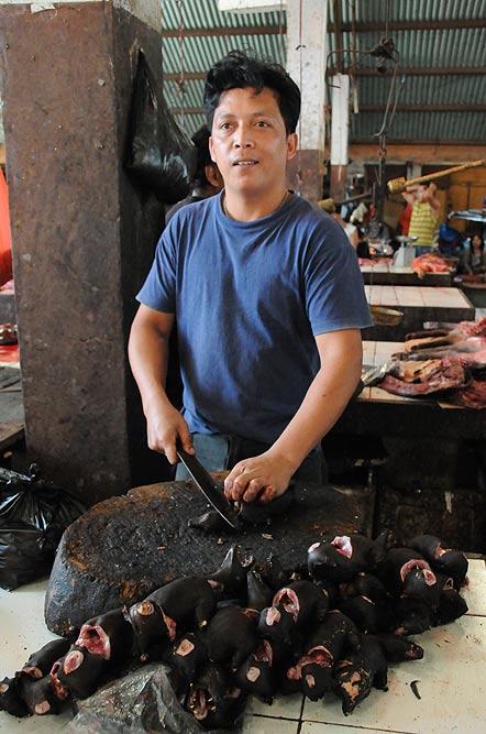 Tomohon, Markt, market, Minahasa-Hochland, Fledermäuse, bats, Mann, Indonesien, Indonesia, Nord-Sulawesi, Reiseberichte, Foto: Heiko Meyer, www.wo-der-pfeffer-waechst.de