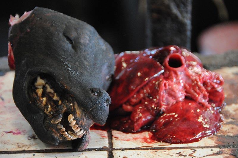Tomohon, Markt, market, Minahasa-Hochland, Hundkopf mit Innereien, dead dog, Indonesien, Indonesia, Nord-Sulawesi, Reiseberichte, Foto: Heiko Meyer, www.wo-der-pfeffer-waechst.de