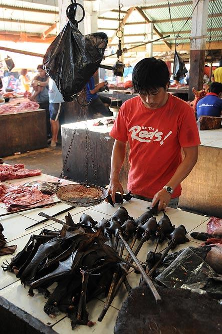 Tomohon, Markt, market, Minahasa-Hochland, tote Flughunde, dead bats, Mann, Indonesien, Indonesia, Nord-Sulawesi, Reiseberichte, Foto: Heiko Meyer, www.wo-der-pfeffer-waechst.de