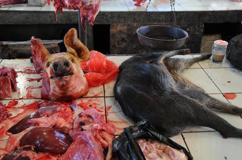 Tomohon, Markt, market, Minahasa-Hochland, totes Schwein, dead pig, Indonesien, Indonesia, Nord-Sulawesi, Reiseberichte, Foto: Heiko Meyer, www.wo-der-pfeffer-waechst.de