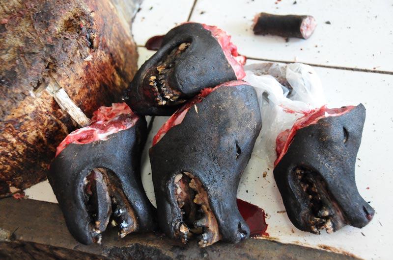 Tomohon, Markt, market, Minahasa-Hochland, vier Hundeköpfe, dead dogs, Indonesien, Indonesia, Nord-Sulawesi, Reiseberichte, Foto: Heiko Meyer, www.wo-der-pfeffer-waechst.de