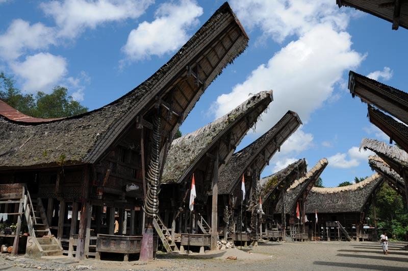 Tongkonan, Tana Toraja, Sulawesi, Island, Insel, Indonesien, Indonesia, Totenkult, Begräbniszeremonien, Reiseberichte, Foto: Heiko Meyer, www.wo-der-pfeffer-waechst.de