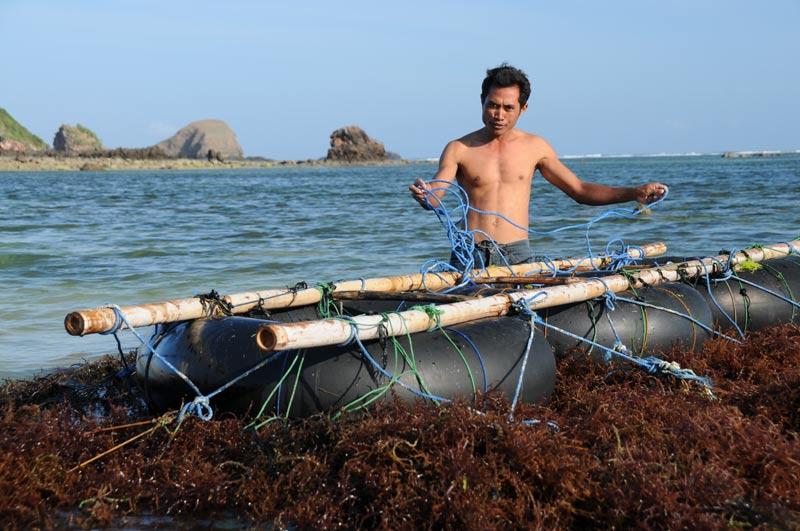 Indonesien, Indonesia, Insel, Lombok, Kuta, Strände, Beach, Fischer, Reiseberichte, Foto: Heiko Meyer, www.wo-der-pfeffer-waechst.de