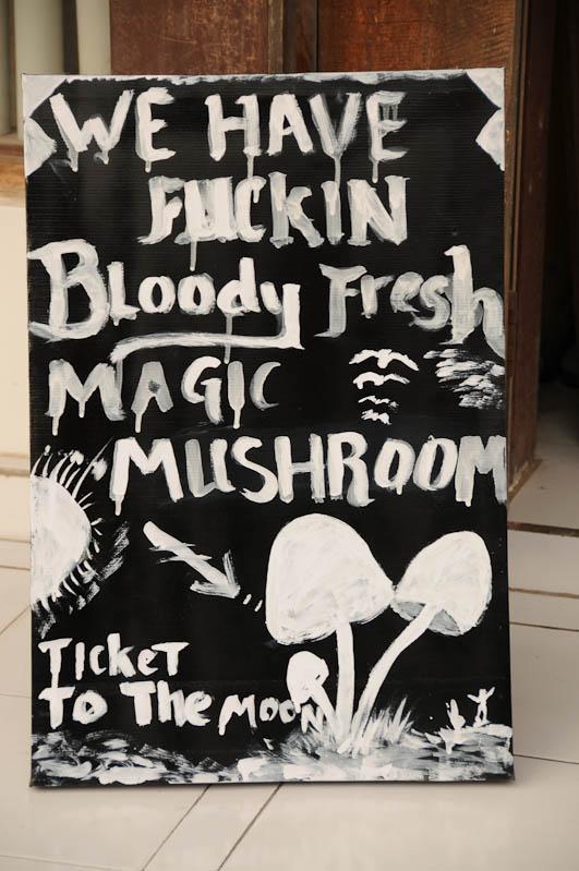 Lombok, Gili Trawangan, Magic Mushrooms, halluzinogene Pilze, Drogen, Partyinsel, Indonesien, Indonesia, Insel, Reiseberichte, www.wo-der-pfeffer-waechst.de