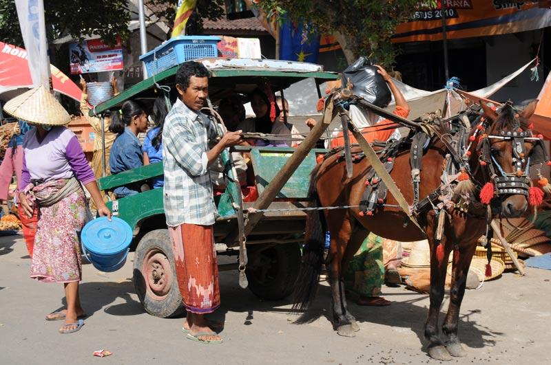 Indonesien, Indonesia, Insel, Lombok, Sengkol, Markt, market, Cidomo, Pferdekutsche, Reiseberichte, Foto: Heiko Meyer, www.wo-der-pfeffer-waechst.de