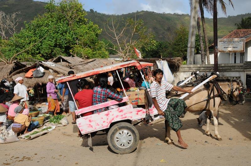 Indonesien, Indonesia, Insel, Lombok, Kuta, Sengkol, Markt, market, Reiseberichte, Foto: Heiko Meyer, www.wo-der-pfeffer-waechst.de
