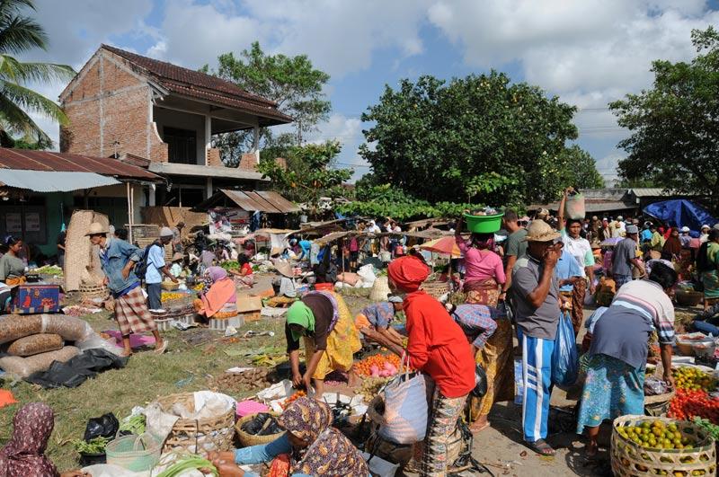 Indonesien, Indonesia, Insel, Lombok, Sengkol, Markt, market, Reiseberichte, Foto: Heiko Meyer, www.wo-der-pfeffer-waechst.de