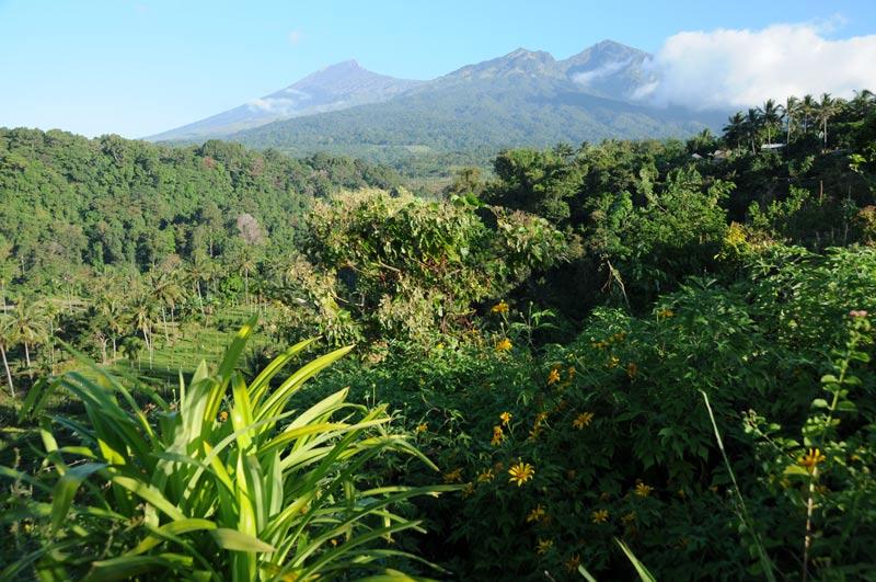 Indonesien, Indonesia, Insel, Lombok, Senaru, Vulkan, volcano, Gunung Rinjani, National Park, Reiseberichte, Foto: Heiko Meyer, www.wo-der-pfeffer-waechst.de