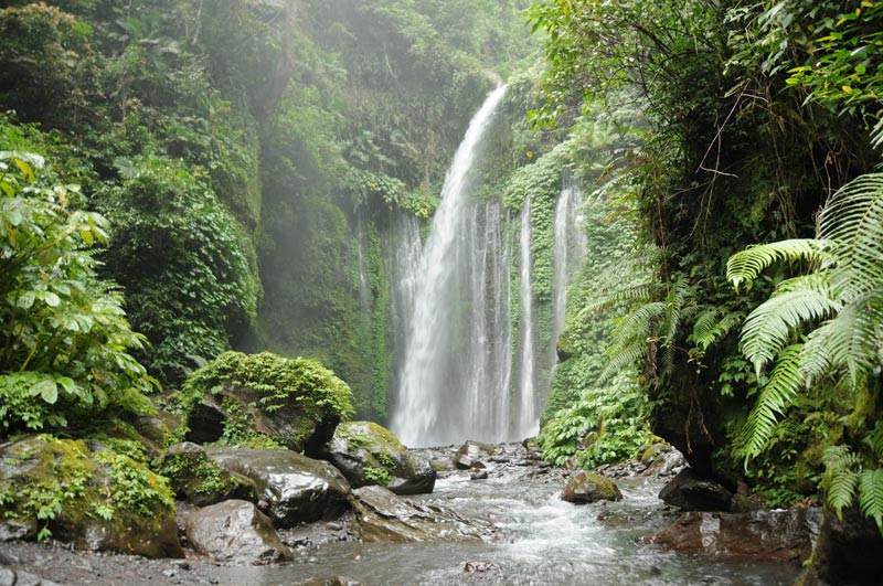 Indonesien, Indonesia, Insel, Lombok, Senaru, Vulkan, Gunung Rinjani, Wasserfall, Air Terjun Sendang Gile, Reiseberichte, Foto: Heiko Meyer, www.wo-der-pfeffer-waechst.de