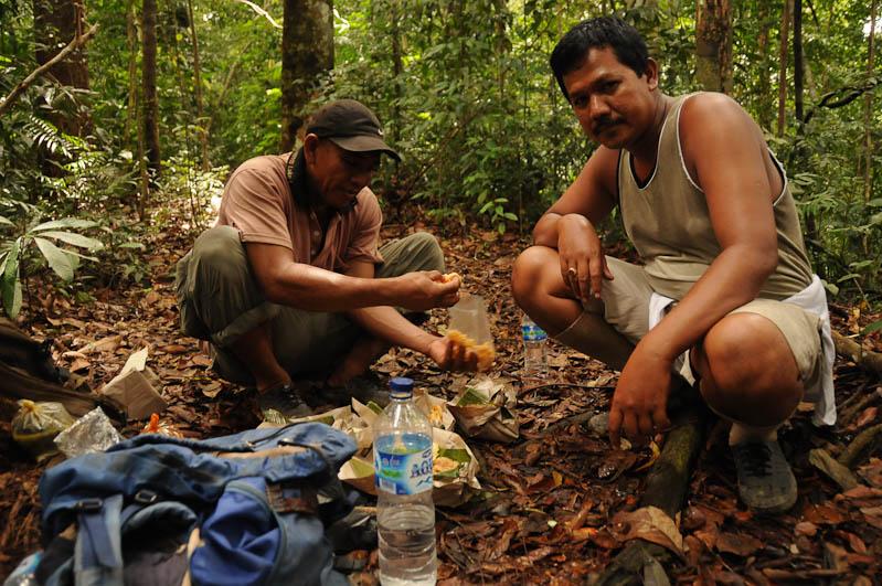 Bukit Lawang, Gunung-Leuser-Nationalpark, Ranger, Nord-Sumatra, Trekking, Urwald, Dschungel, Indonesien, Indonesia, Reisebericht, www.wo-der-pfeffer-waechst.de