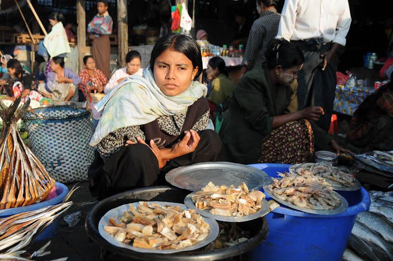 Sittwe, Fischmarkt, Verkäuferin, fish market, Akyab, Rakhine-Staat, State, Division, Myanmar, Burma, Birma, Reisebericht, www.wo-der-pfeffer-waechst.de