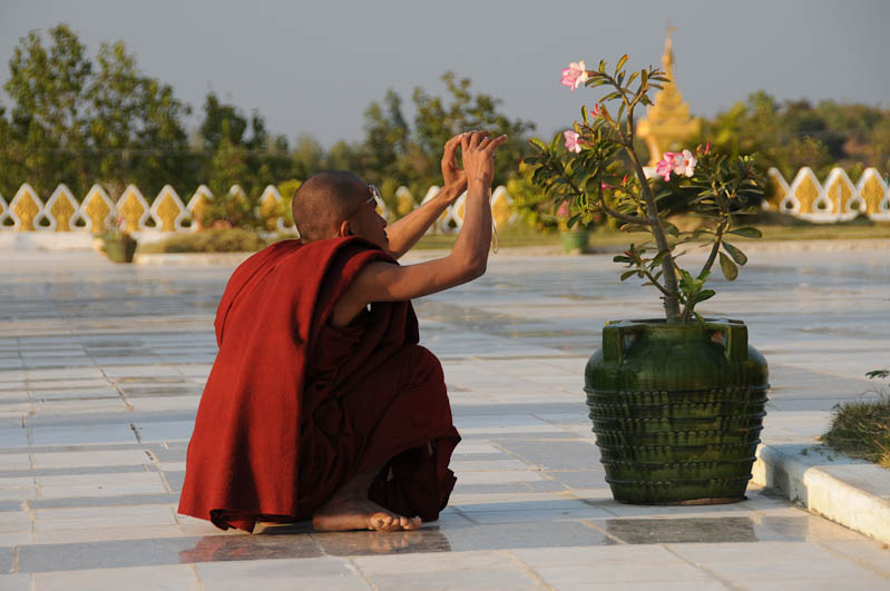 Monywa, buddhistischer Mönch mit Blume, Myanmar, Burma, Birma, Reisebericht, www.wo-der-pfeffer-waechst.de