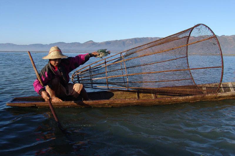Myanmar, Burma, Birma, Inle-See, lake, Intha, Fischer, Volk, Shan-Staat, state, division, Reiseberichte, www.wo-der-pfeffer-waechst.de