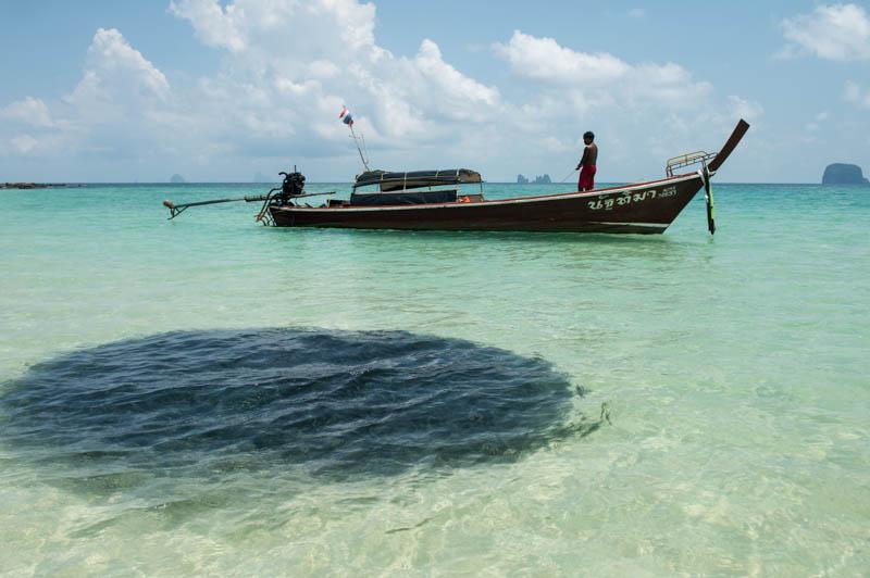 Koh Bulon, Ko Bulon, Leh, Lae, Thailand, Fischschwarm, Strand, Strände, Beach, Insel, Andamanensee, Bilder, Fotos, Reiseberichte, www.wo-der-pfeffer-waechst.de
