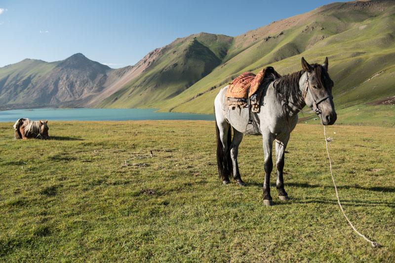 Kochkor, Köl-Ükök, See, Lake, Trekking, Kirgisistan, Kirgistan, Kirgisien, Jurten, kirgisische Nomaden, Pferde, Seidenstraße, Zentralasien, Reiseberichte, www.wo-der-pfeffer-waechst.de