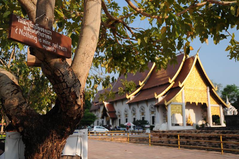 Chiang Mai, Nordthailand, Altstadt, Wat Chedi Luang, buddhistischer Tempel, Reisetipps, Reisen mit Kindern, Babys, Kleinkindern, Elternzeit, Asien, Reiseberichte, Reiseblogger, www.wo-der-pfeffer-waechst.de